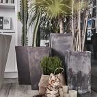 一个将自然与家共生,愉悦自在的设计公司_3524712