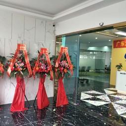 广东中山龙创智能科技公司_3643596