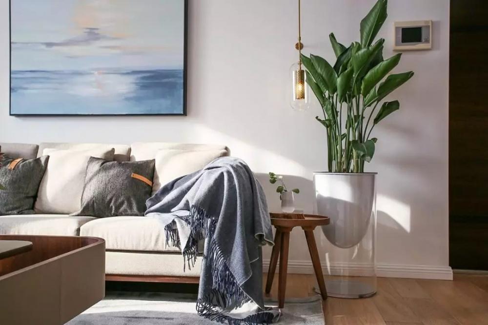左手茶右手酒深圳工作20年在苏州找到归属客厅现代简约客厅设计图片赏析