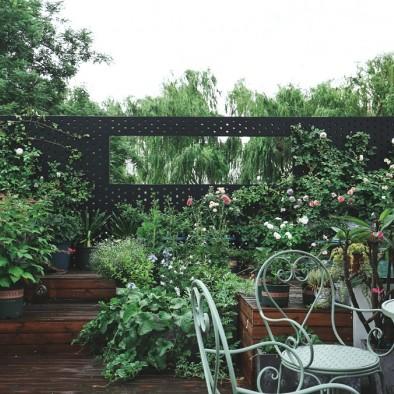 我们在胡同里,开了家花园般的设计工作室