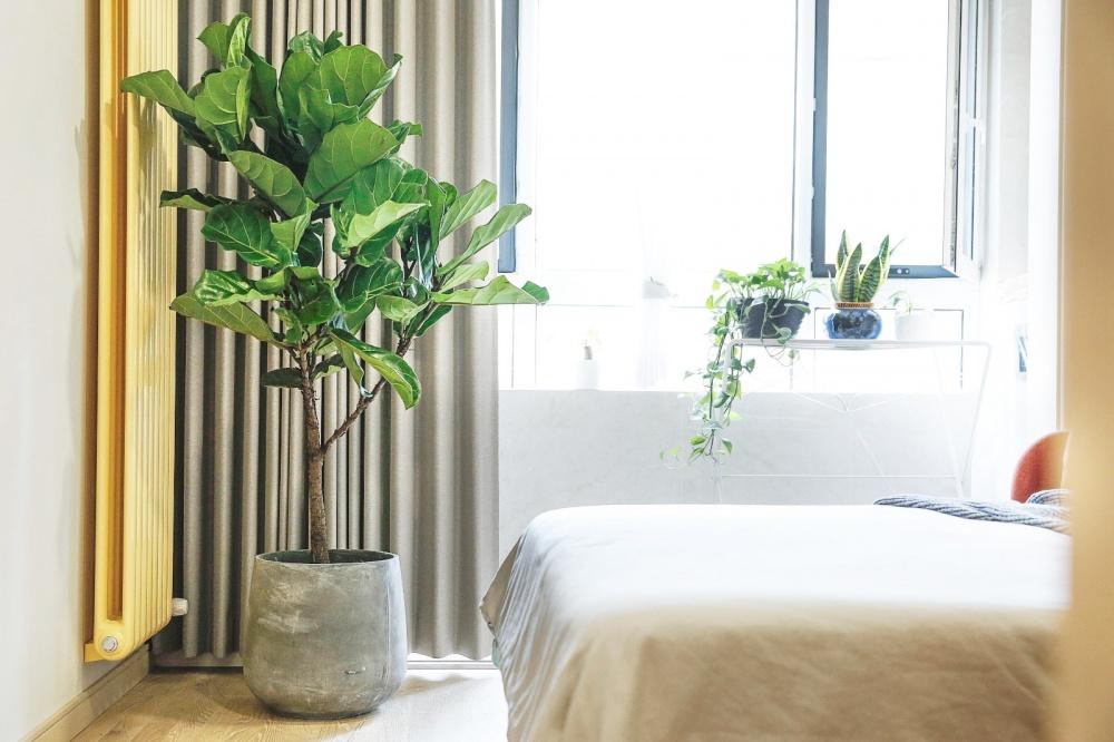 65岁老太的前卫海景房卧室2图现代简约卧室设计图片赏析
