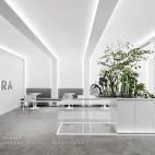 【季意】IS FLORA——室内环境图片