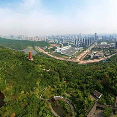 重庆万科星光森林:城市人文 诗性自然_3983078