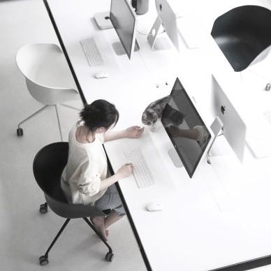 Simpleline Office_3991255