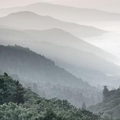 武夷山月印万川·隐屏 | 柏年印象_1593671193_4190749