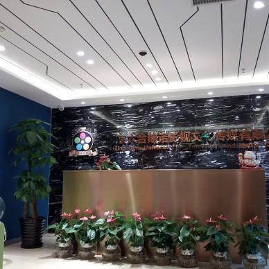 北京六合影视公司_4215507
