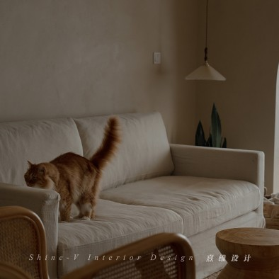 《织巢》,两个人和五只猫的侘寂生活