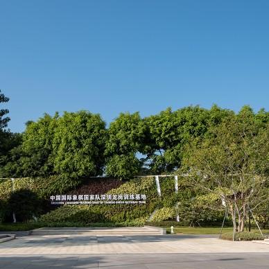 DHO|中国国际象棋国家队深圳训练基地_1611824255