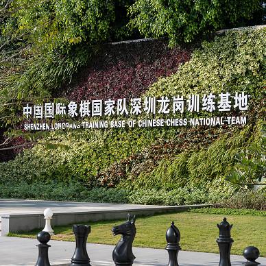 DHO|中国国际象棋国家队深圳训练基地_1611824256_4372599
