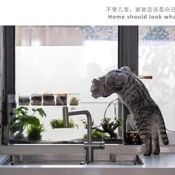 当遇到猫奴家做设计,只做一室?_1616557129_4404258
