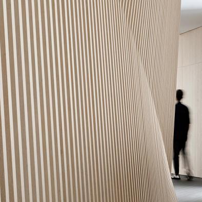 国菱集团办公室:直线,曲线,游走,交互